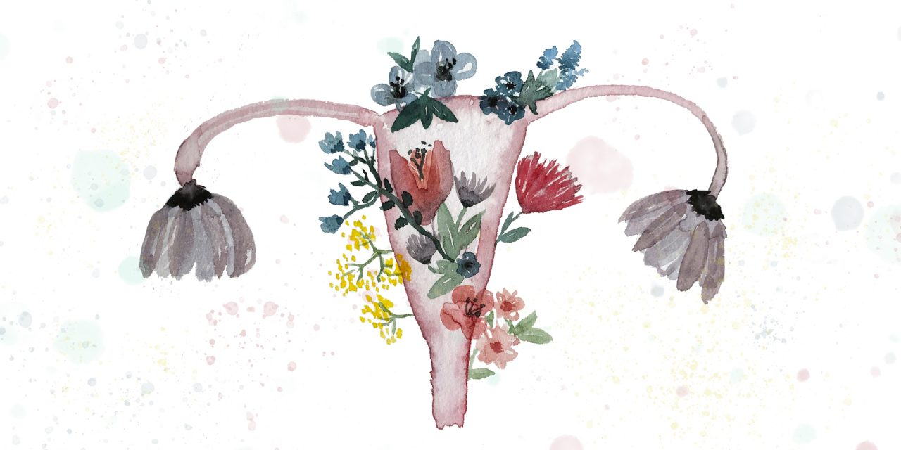 Vulva, vagina, labia… What is all of this exactly?